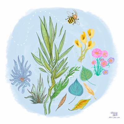 portfolio-foliage-and-bee